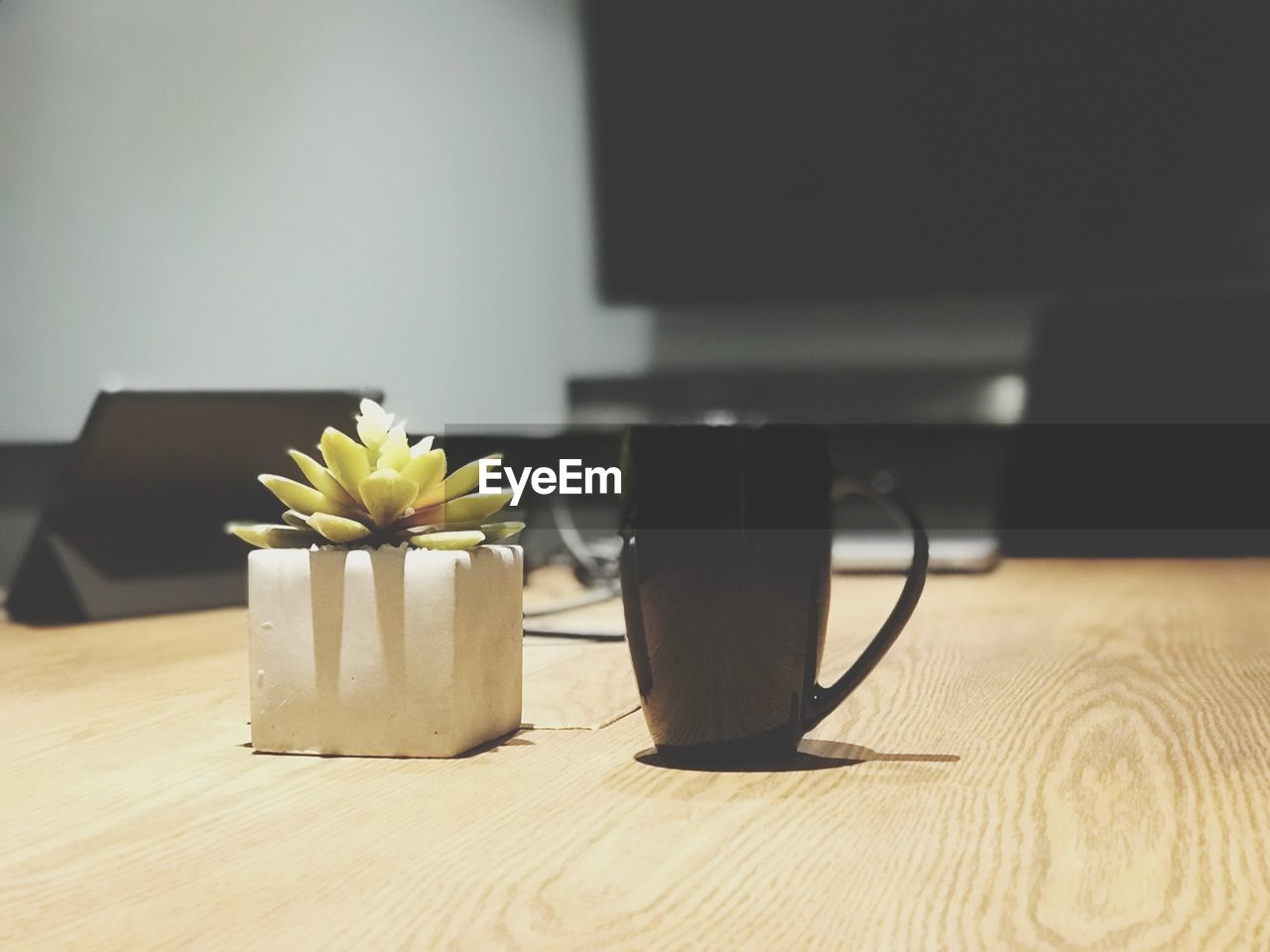 table, indoors, flowering plant, flower, technology, plant, freshness, no people, cup, still life, wood - material, close-up, food and drink, mug, focus on foreground, connection, drink, home interior, vase, nature