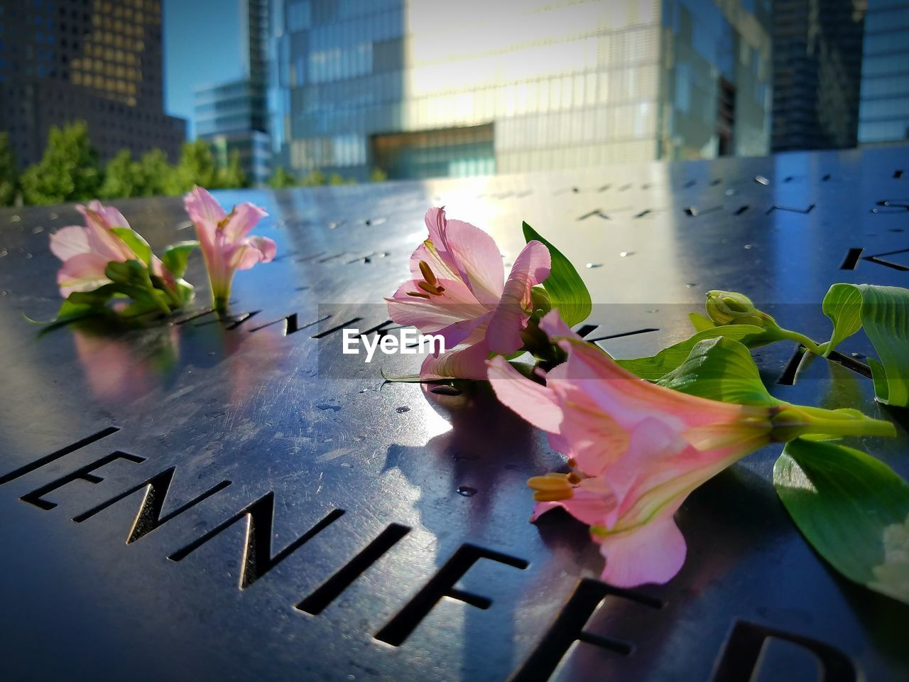 High Angle View Of Flowers On Tombstones During Memorial Day