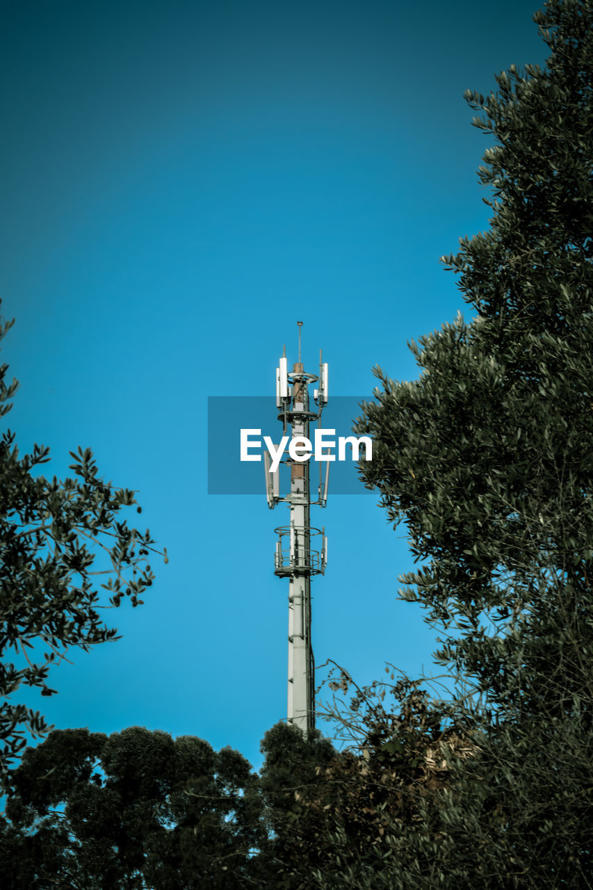 tree, tall - high, low angle view, tower, blue, technology, clear sky, telecommunications equipment, no people, communication, day, growth, outdoors, architecture, branch, nature, sky