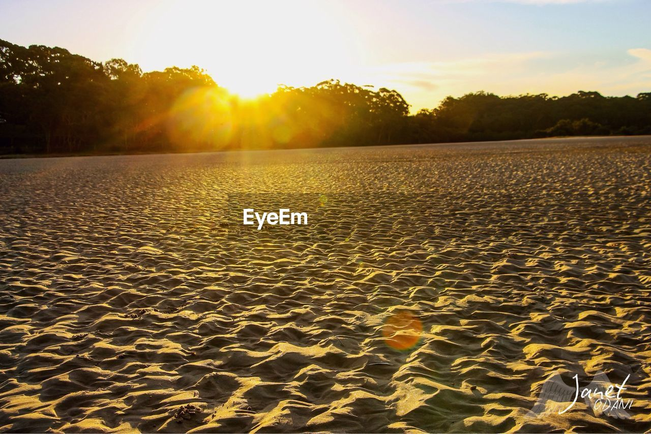 sunset, tranquility, sky, sunlight, sand, beauty in nature, tranquil scene, scenics - nature, land, nature, no people, pattern, tree, water, beach, non-urban scene, orange color, idyllic, sun, outdoors, lens flare