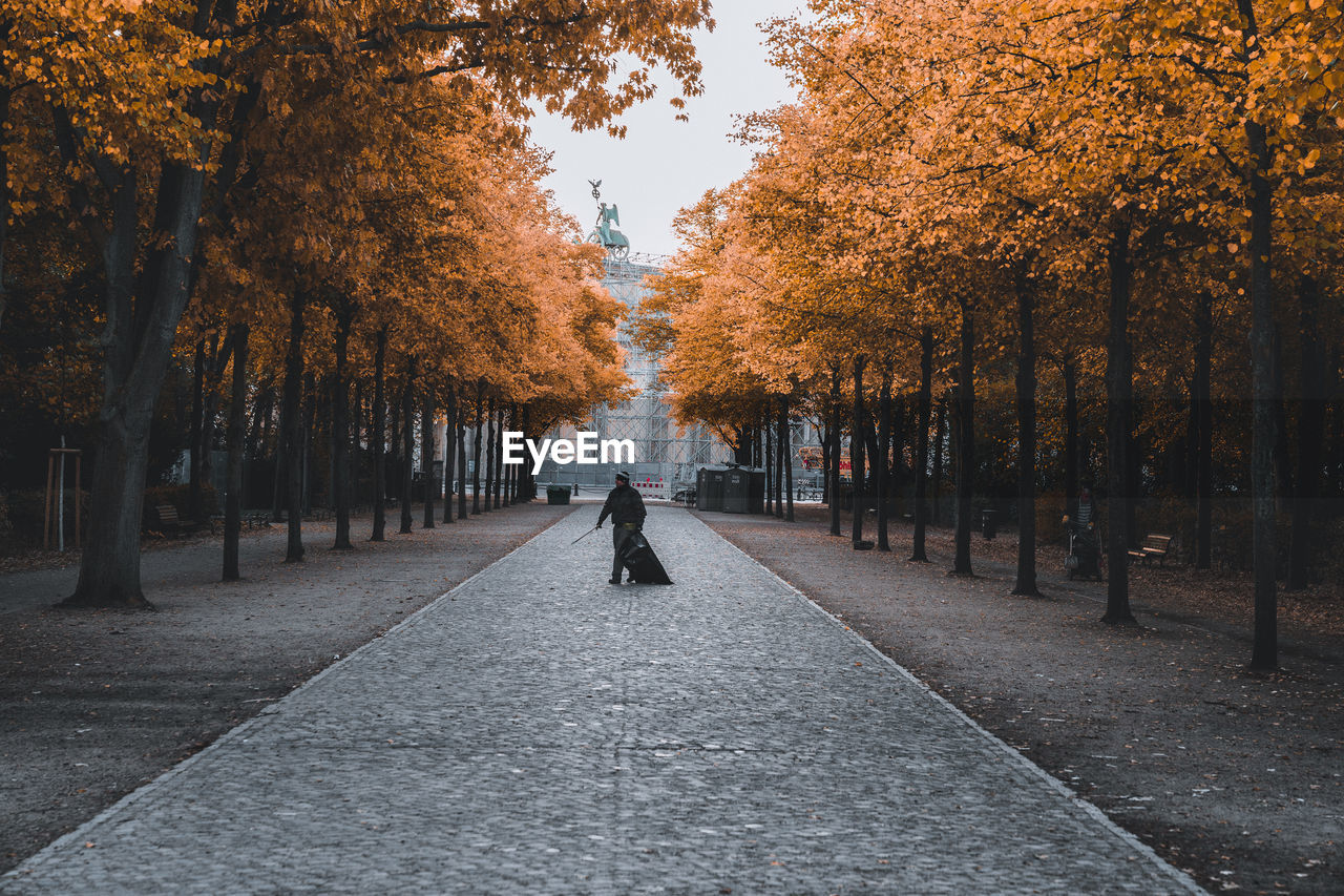 Man Walking On Footpath Amidst Autumn Trees In City