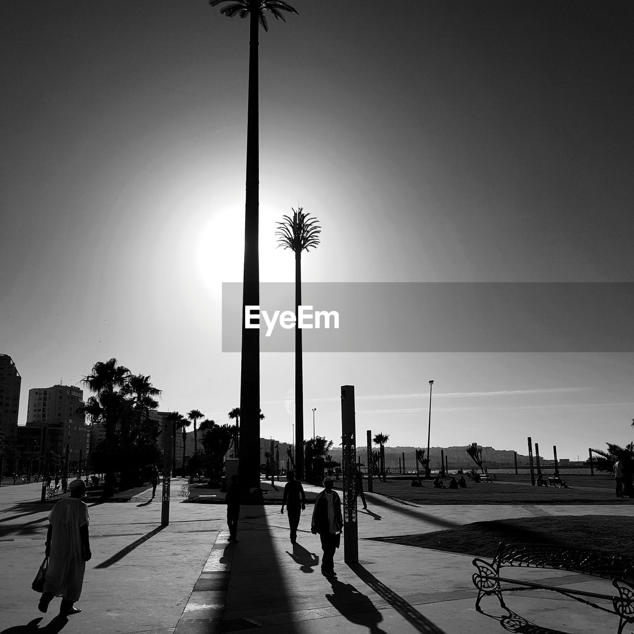 PEOPLE BY PALM TREE AGAINST SKY