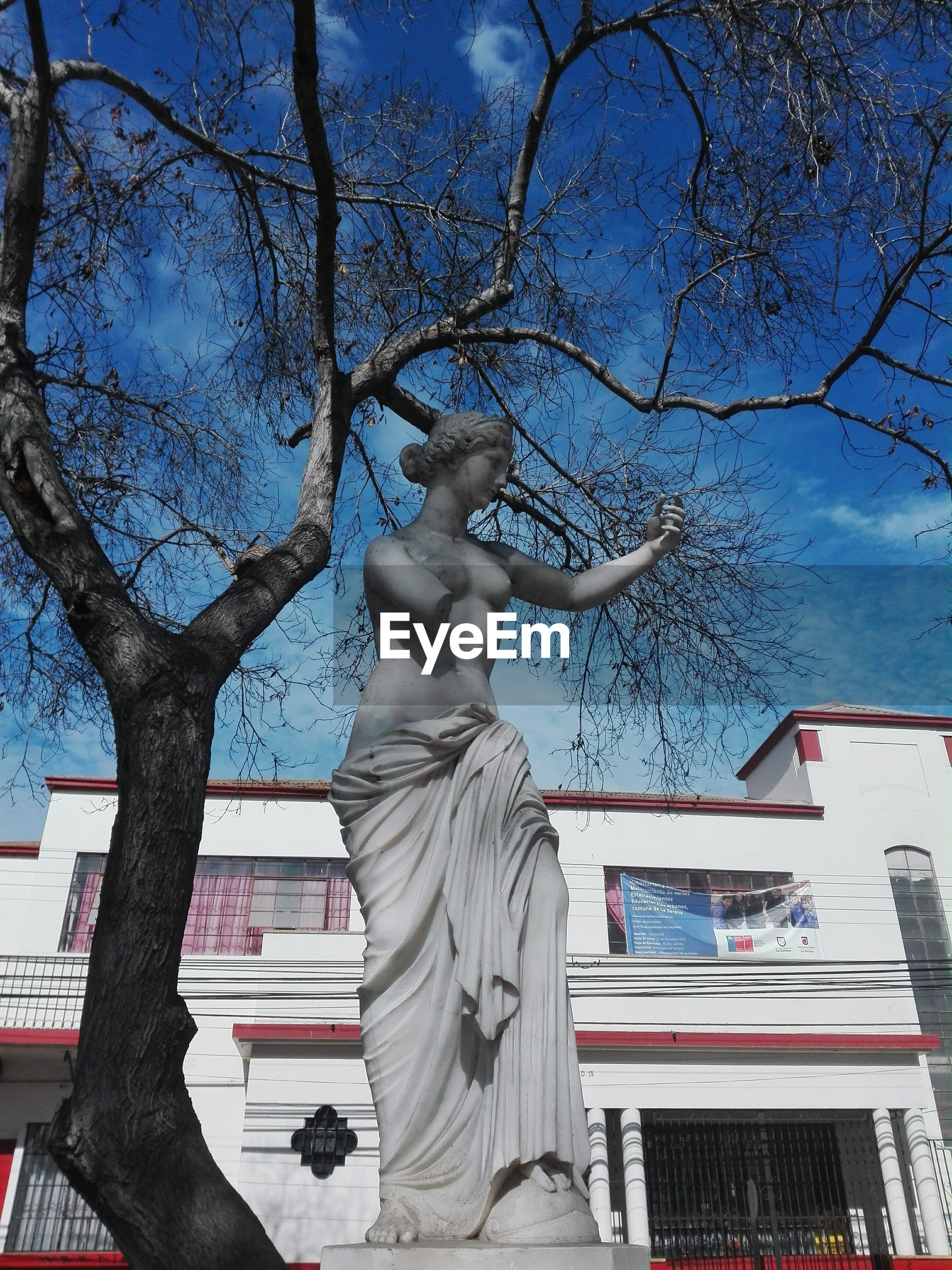 building exterior, low angle view, built structure, architecture, human representation, sculpture, statue, art and craft, tree, art, sky, creativity, city, blue, bare tree, day, outdoors