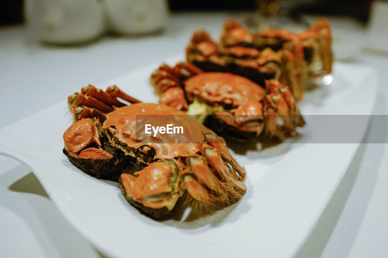 food and drink, plate, food, freshness, ready-to-eat, still life, serving size, close-up, indoors, table, healthy eating, no people, wellbeing, seafood, focus on foreground, crustacean, selective focus, high angle view, meat, indulgence, temptation, tapas