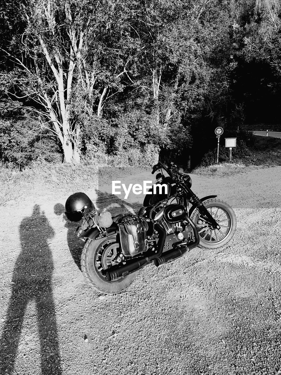 transportation, tree, motorcycle, day, real people, mode of transport, land vehicle, outdoors, one person, helmet, men, nature, people