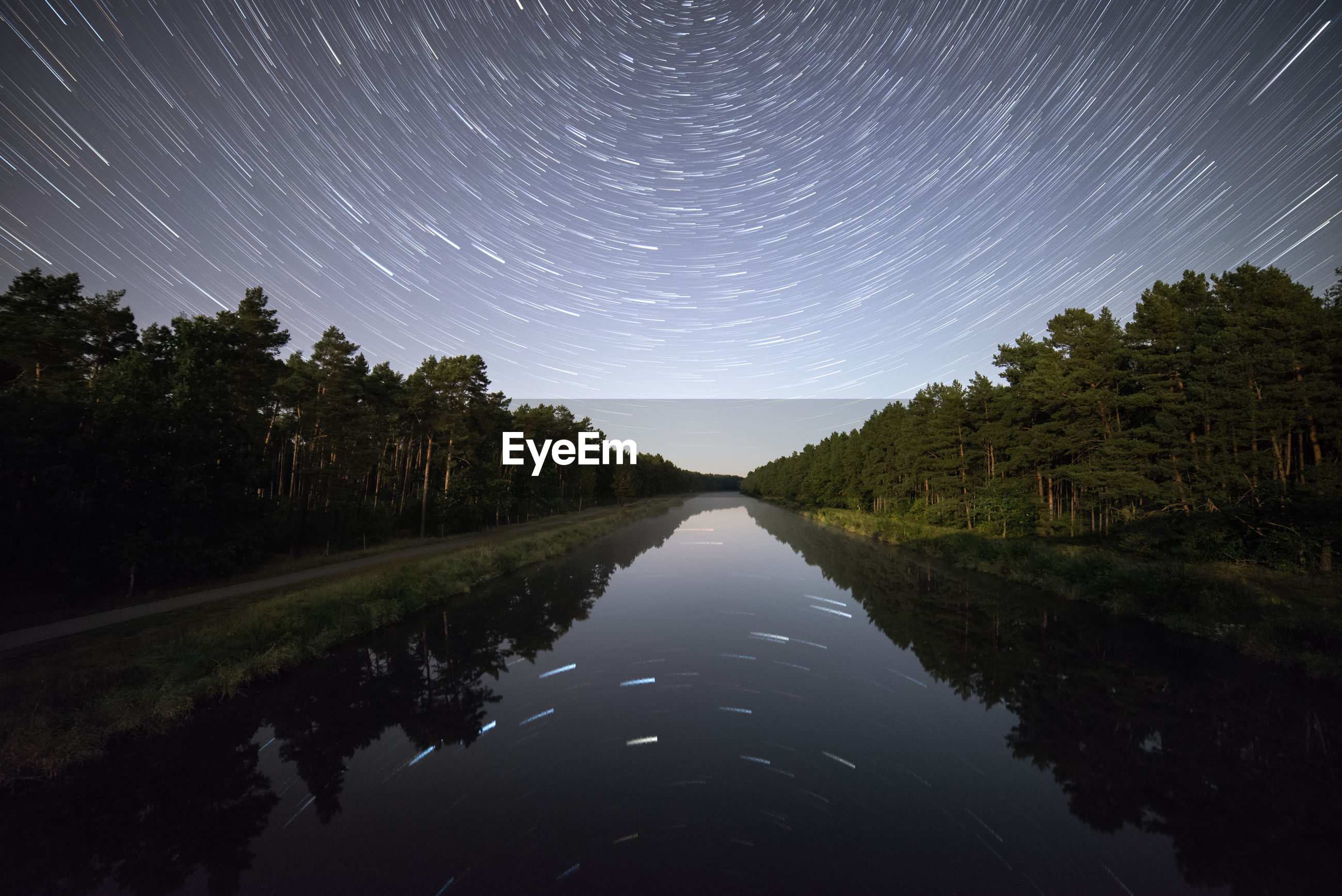 REFLECTION OF TREES IN WATER AT NIGHT