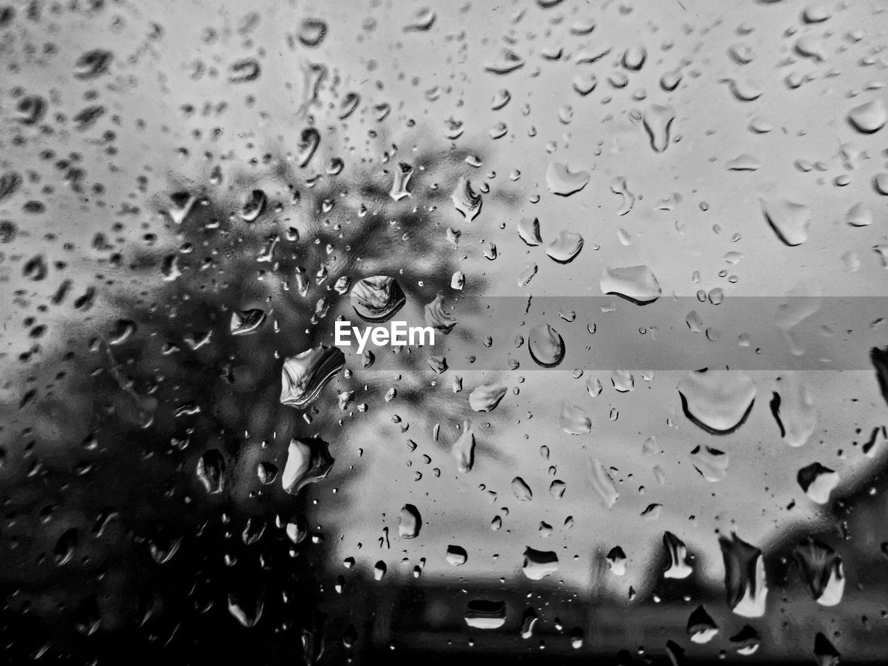 drop, water, wet, rain, window, raindrop, rainy season, full frame, close-up, weather, backgrounds, no people, day, car, indoors, focus on foreground, nature, land vehicle, sky, freshness