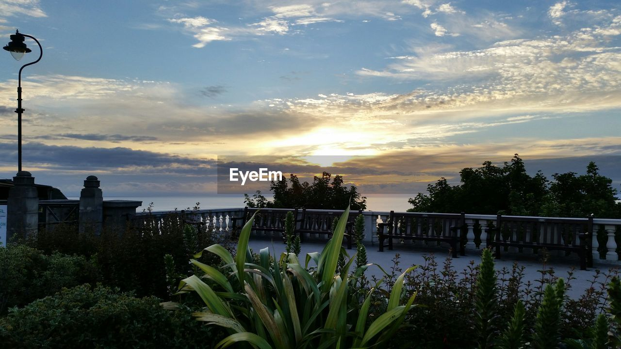 Potted plants in park in front of sea against cloudy sky during sunset
