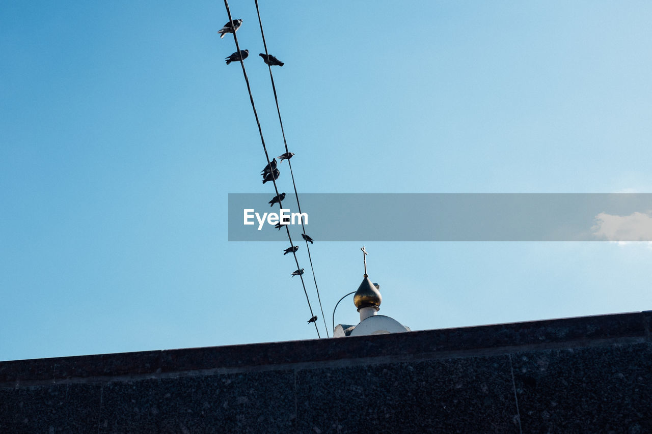 Low angle view of birds perching on cable by church against sky