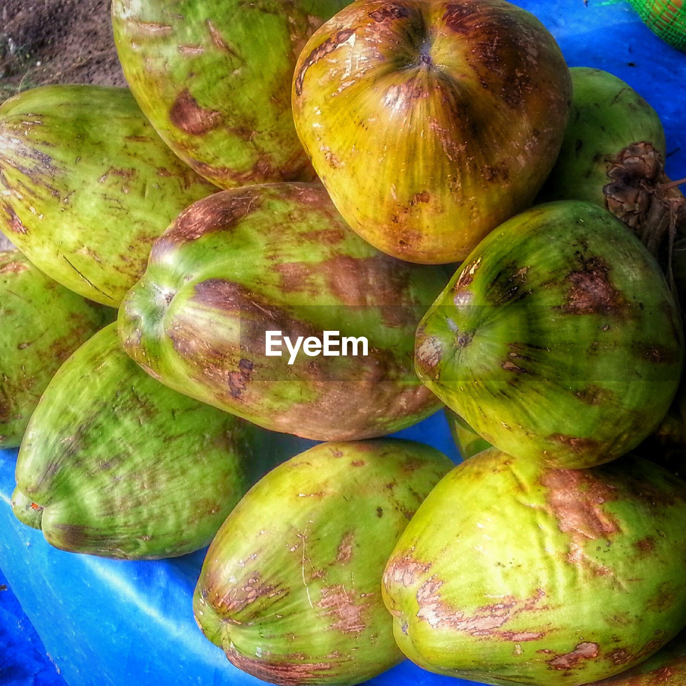 Close-up of coconuts for sale