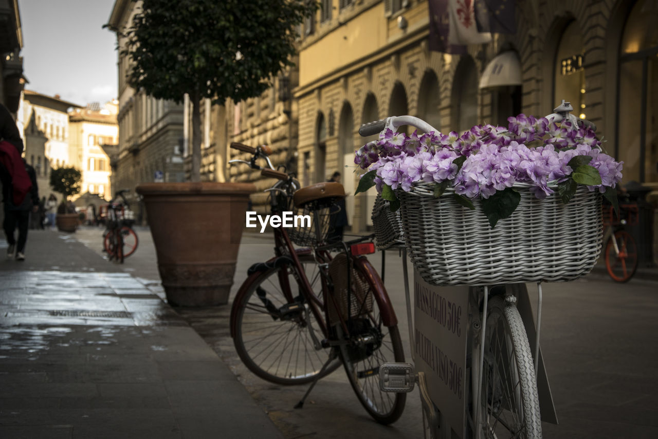 bicycle, architecture, land vehicle, transportation, mode of transportation, building exterior, built structure, city, plant, basket, nature, flowering plant, flower, street, bicycle basket, incidental people, focus on foreground, building, day, container, outdoors