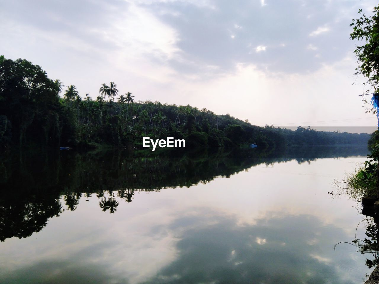 sky, water, tree, plant, reflection, cloud - sky, tranquility, beauty in nature, lake, tranquil scene, scenics - nature, nature, growth, waterfront, no people, non-urban scene, day, idyllic, outdoors, reflection lake
