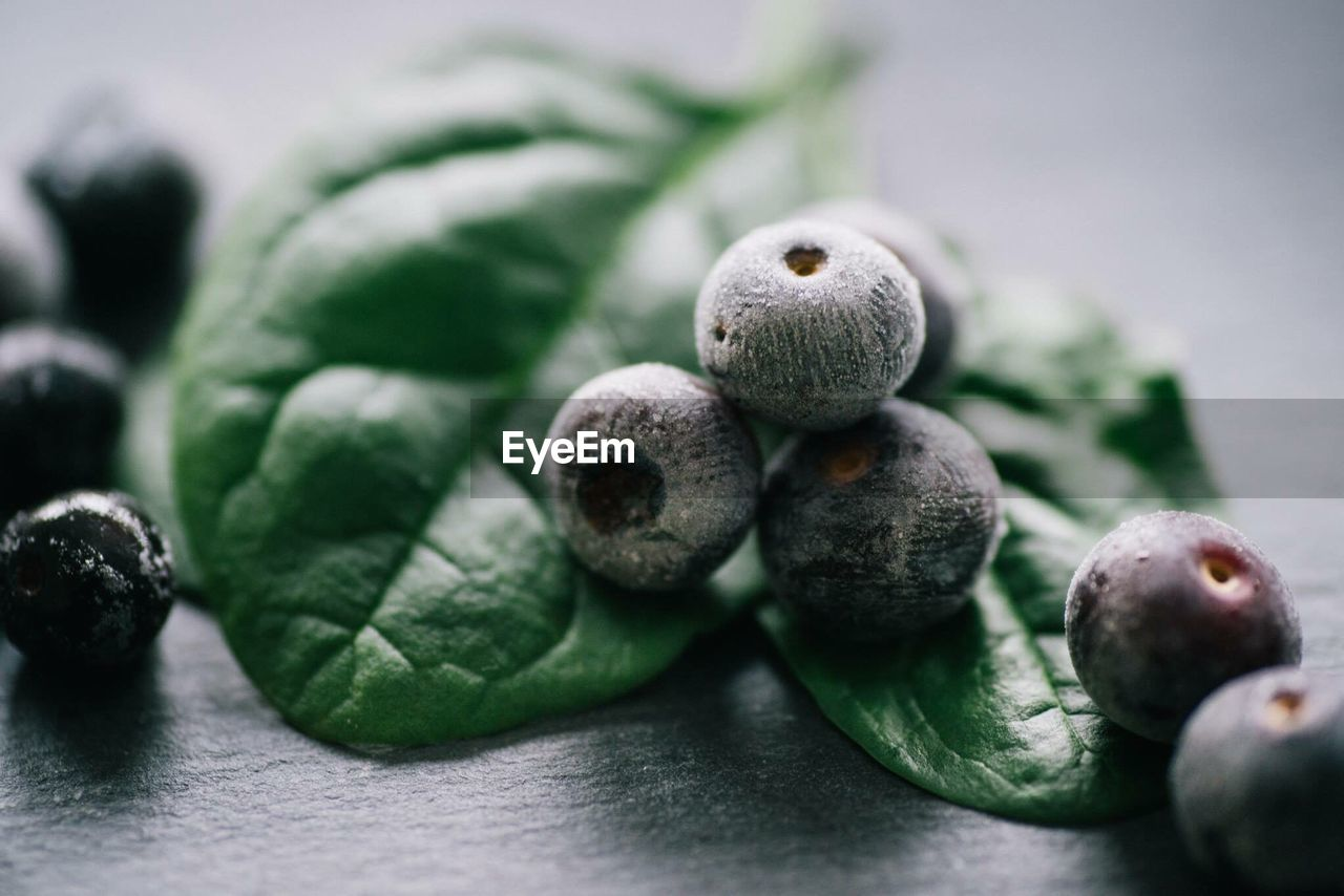 Close-Up Of Frozen Blueberries On Table