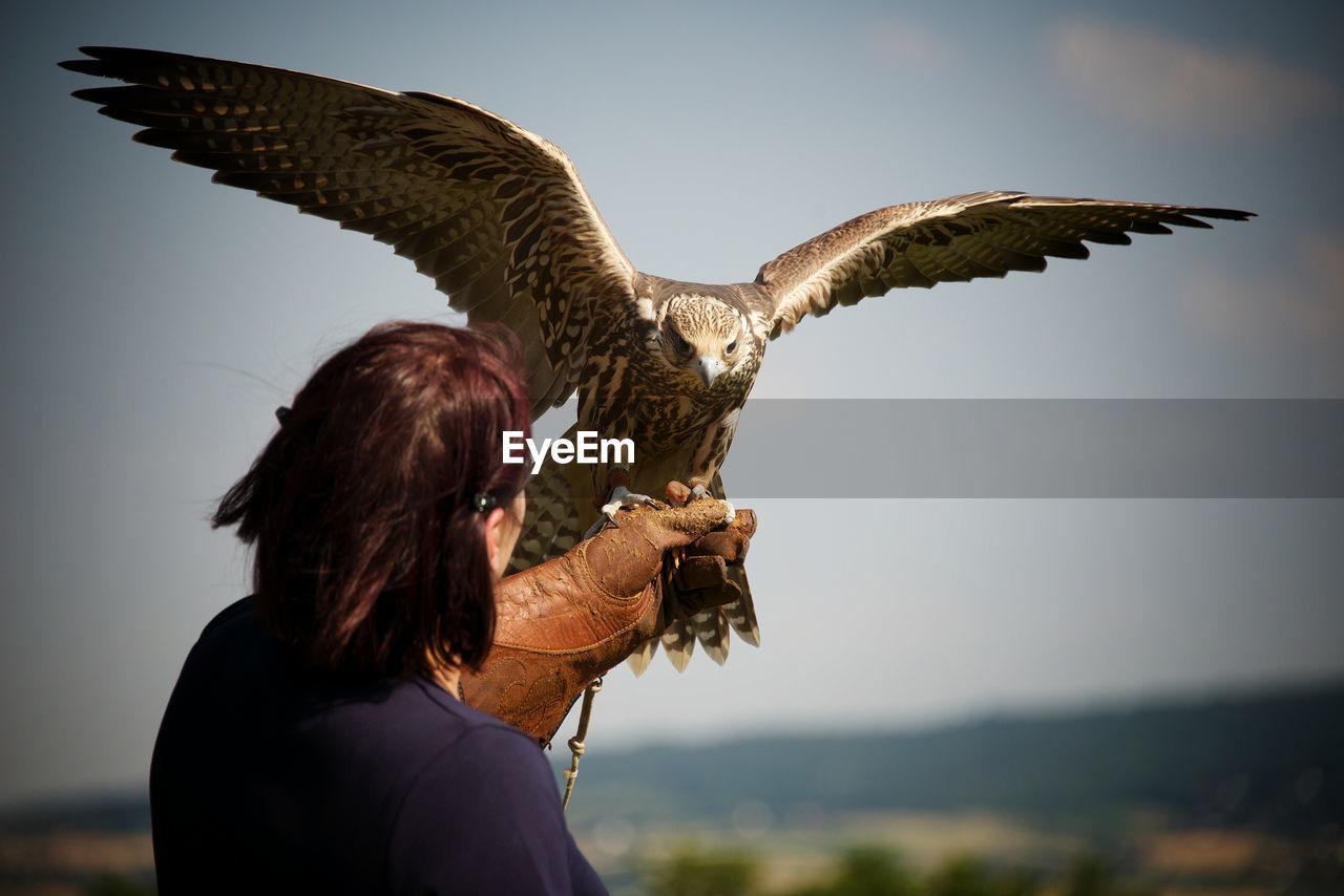 Woman Holding Hawk