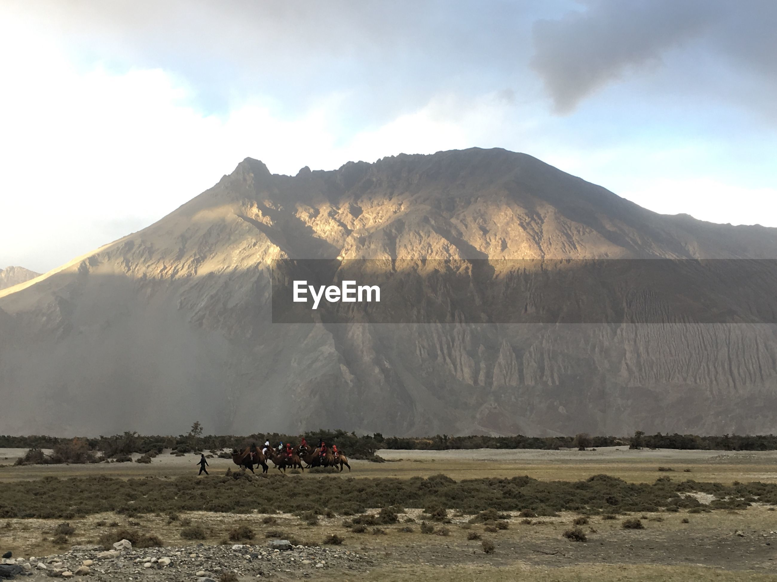 VIEW OF PEOPLE RIDING HORSE ON LANDSCAPE