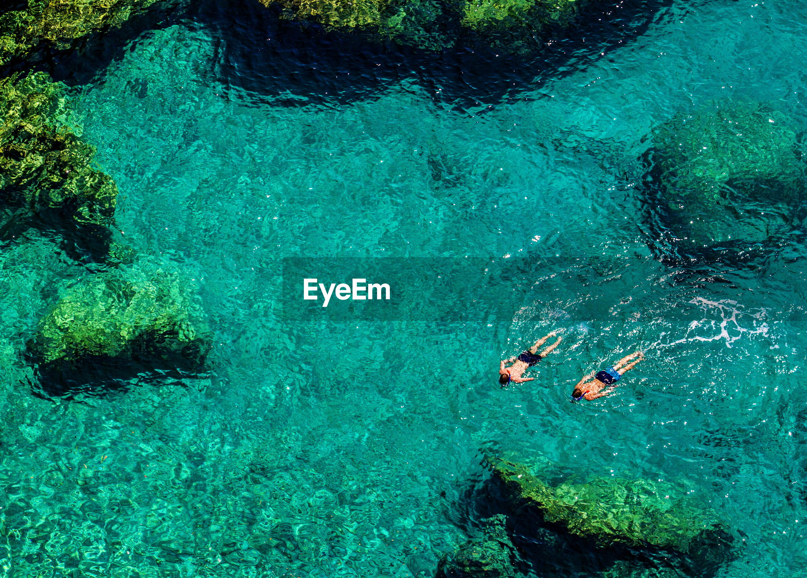 High angle view of men swimming in sea