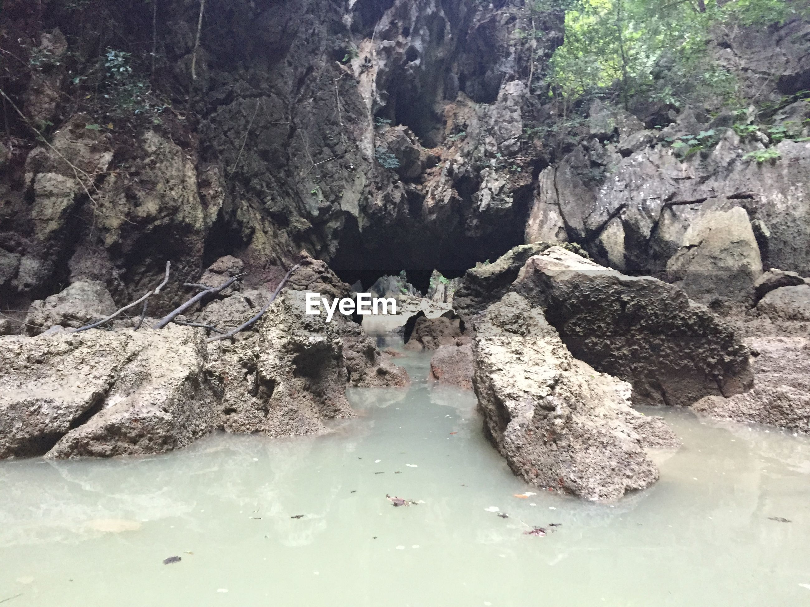 High angle view of lake by rock formation in forest