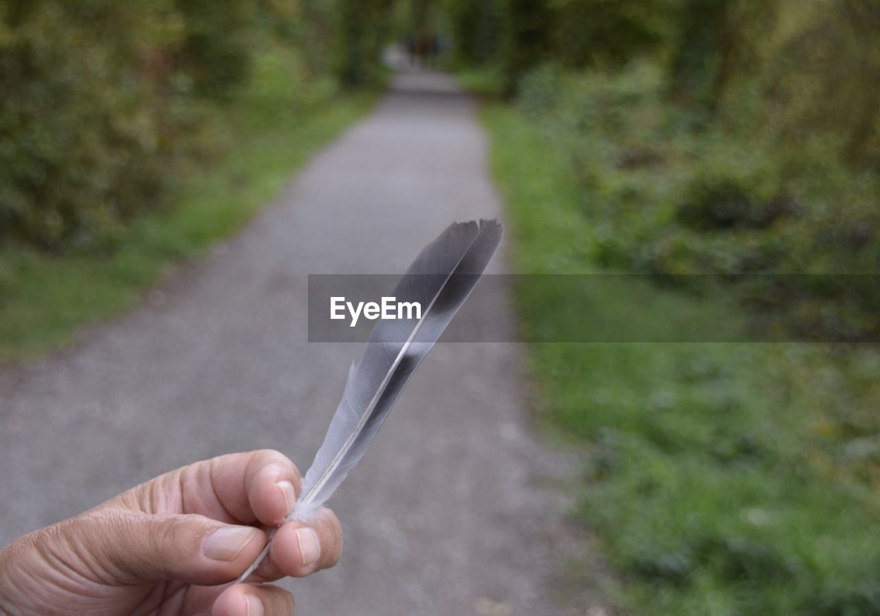 human hand, hand, human body part, holding, one person, focus on foreground, real people, personal perspective, day, body part, unrecognizable person, close-up, eating utensil, finger, lifestyles, human finger, outdoors, road, plant, human limb