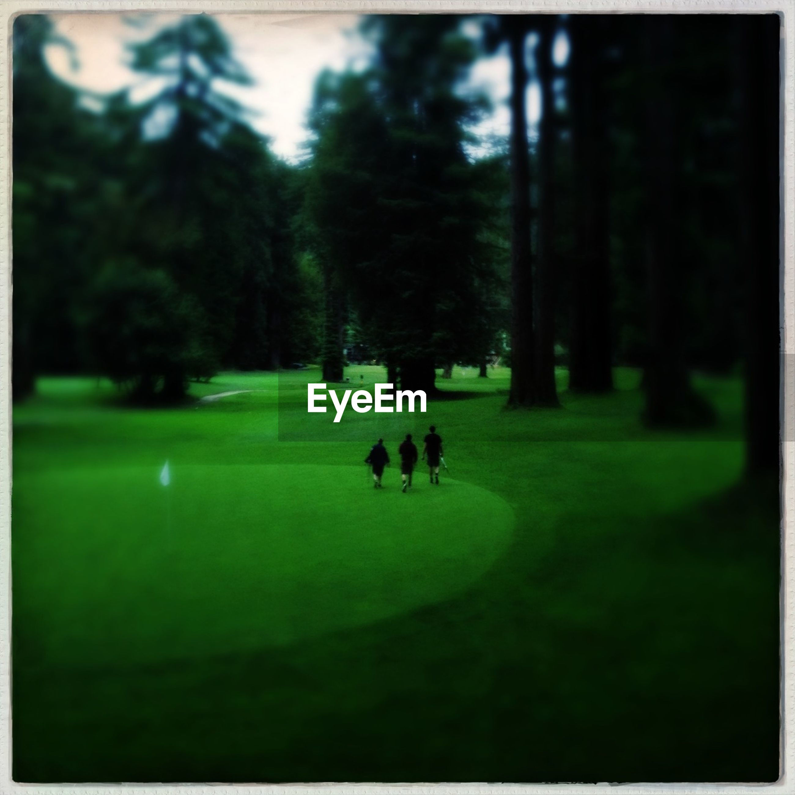 Rear view of people walking on golf course
