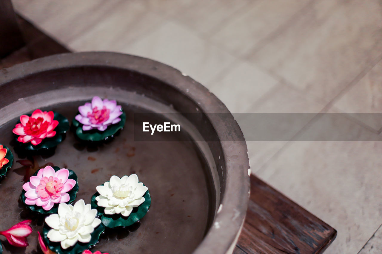 HIGH ANGLE VIEW OF PINK FLOWER ON FLOOR