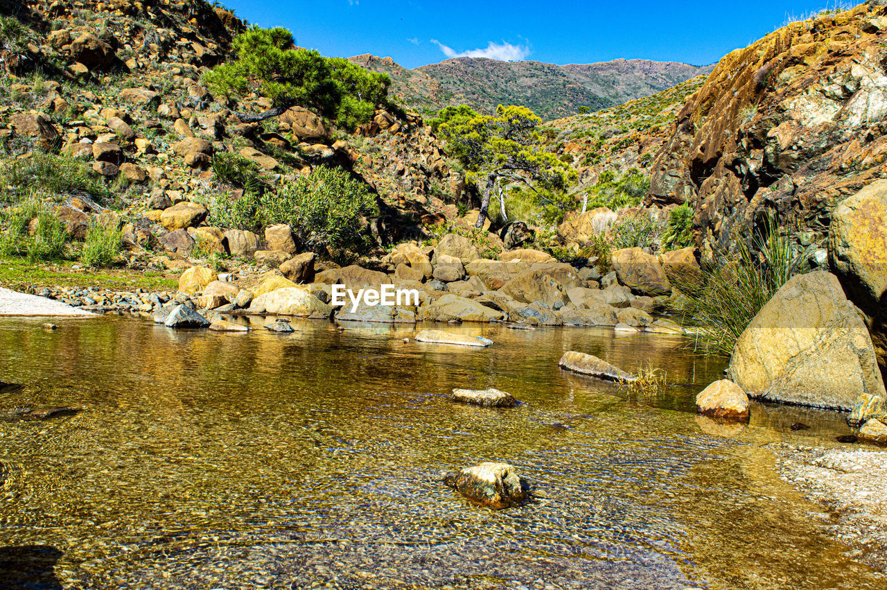 water, rock, scenics - nature, rock - object, nature, solid, animal themes, animal wildlife, animal, no people, lake, mountain, environment, animals in the wild, day, group of animals, beauty in nature, landscape, tranquil scene, mountain range, outdoors