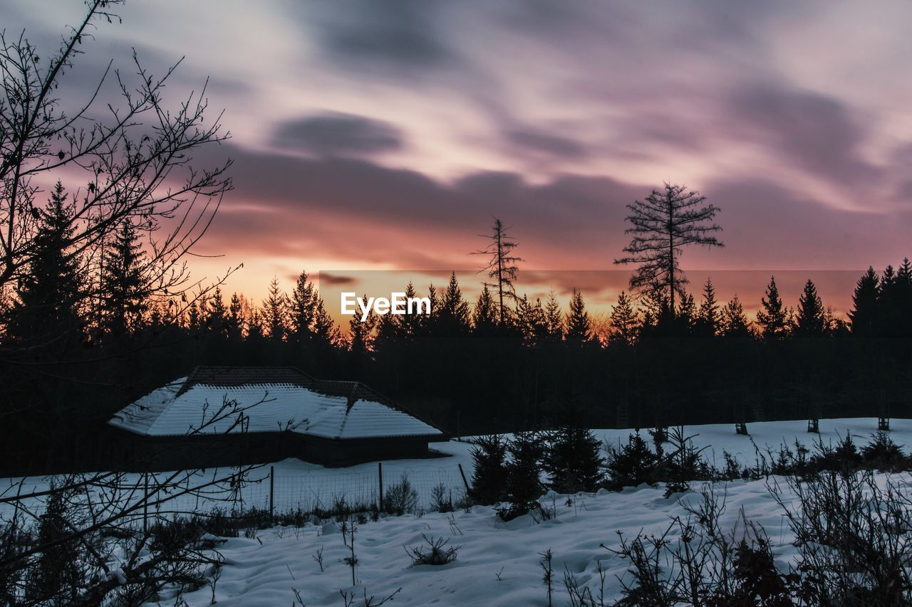 Silhouette trees by snowcapped landscape against cloudy sky during sunset
