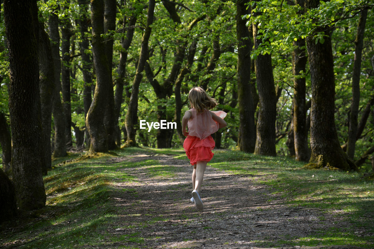 Rear view of girl running on footpath in forest