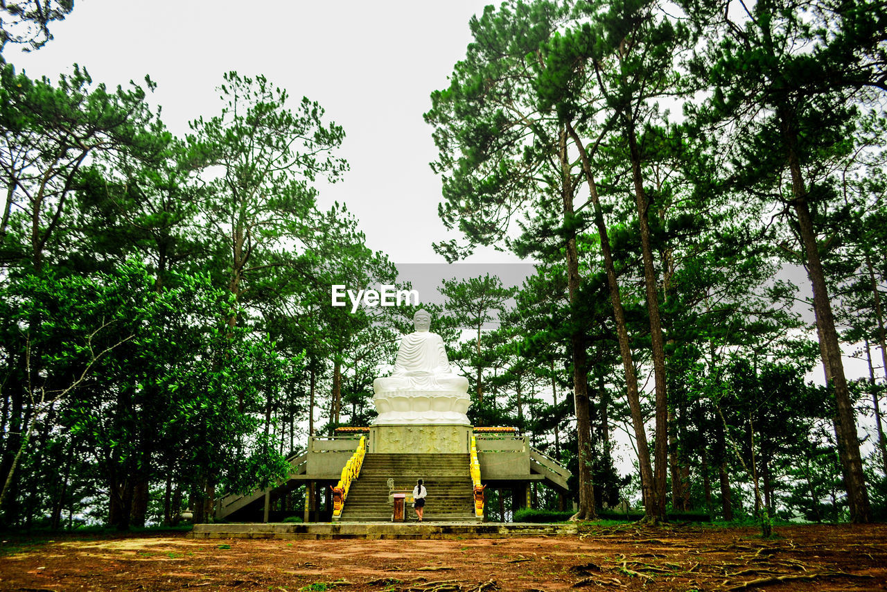 Low angle view of buddha amidst trees against sky