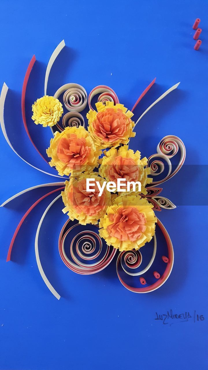 flower, flowering plant, plant, blue, indoors, freshness, no people, colored background, nature, close-up, still life, high angle view, blue background, yellow, beauty in nature, studio shot, creativity, representation, directly above, art and craft, flower head, flower arrangement