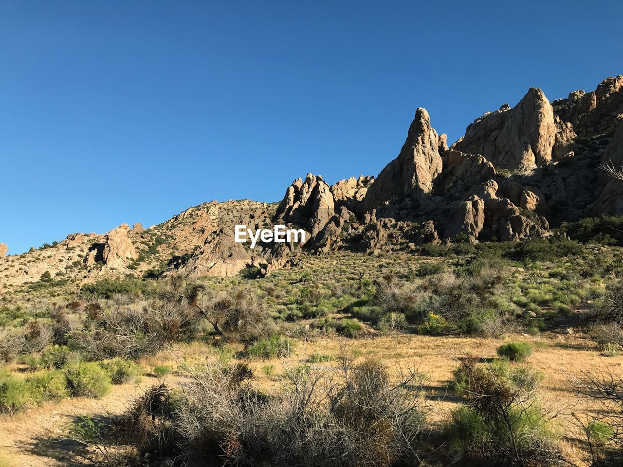 rock formation, nature, rock - object, beauty in nature, clear sky, tranquil scene, geology, tranquility, landscape, scenics, day, non-urban scene, physical geography, outdoors, arid climate, blue, mountain, no people, sunlight, plant, tree, cliff, sky
