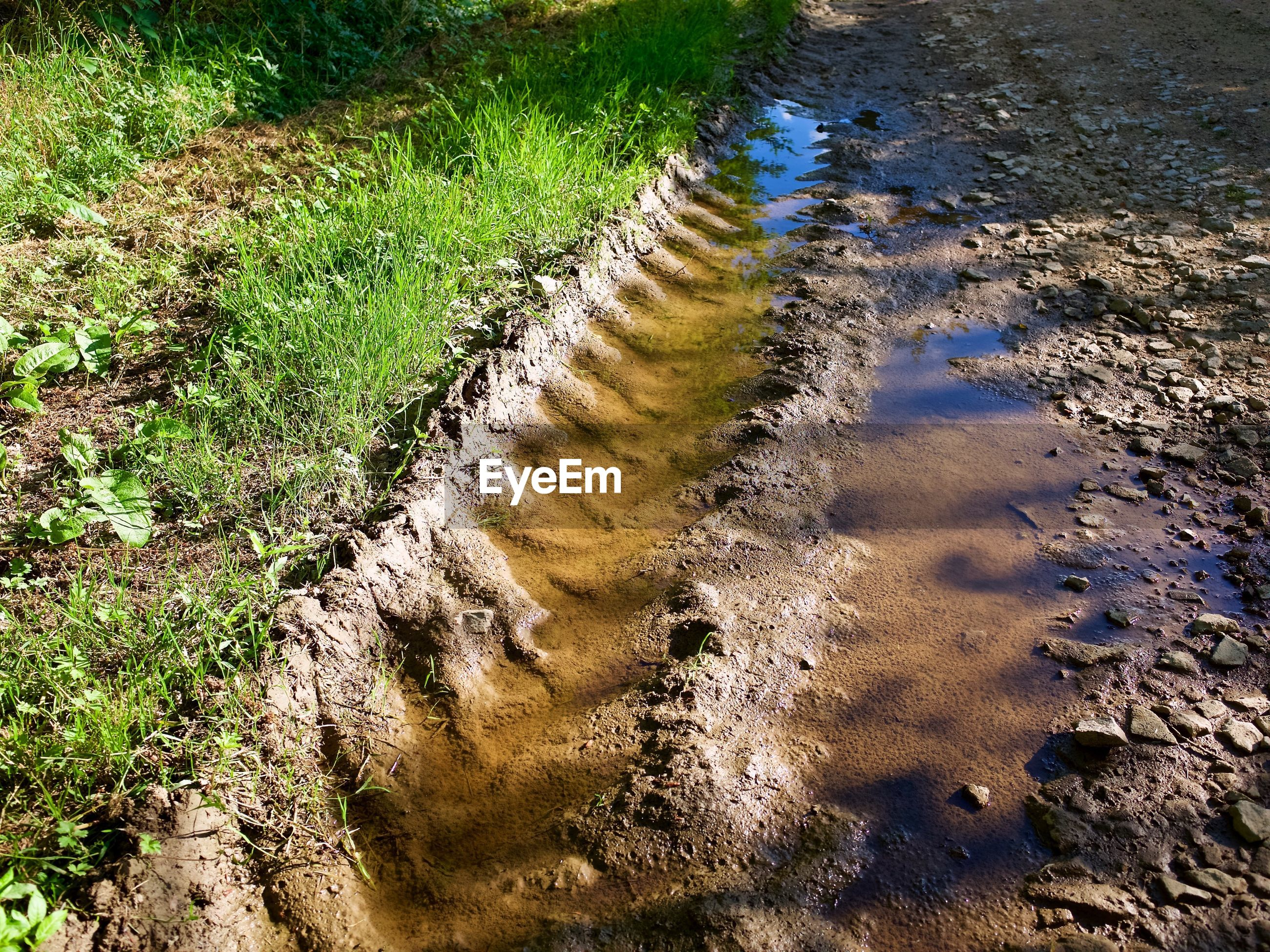 Water collected on tire track