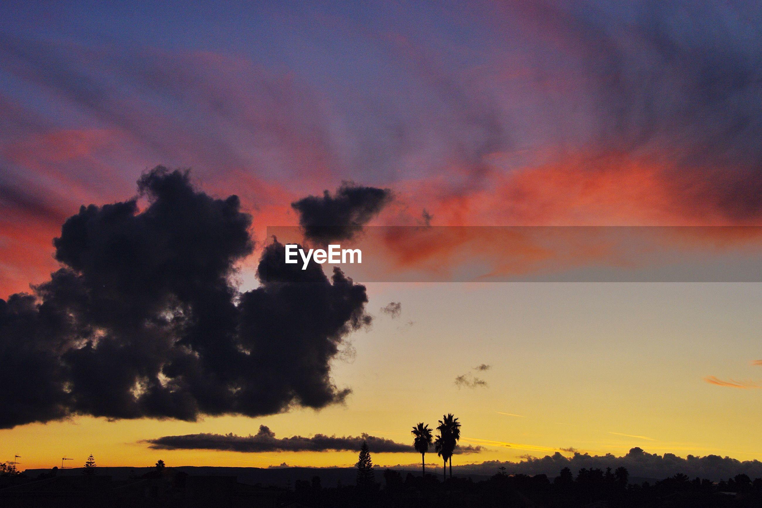Low angle view of silhouette trees against dramatic sky during sunset