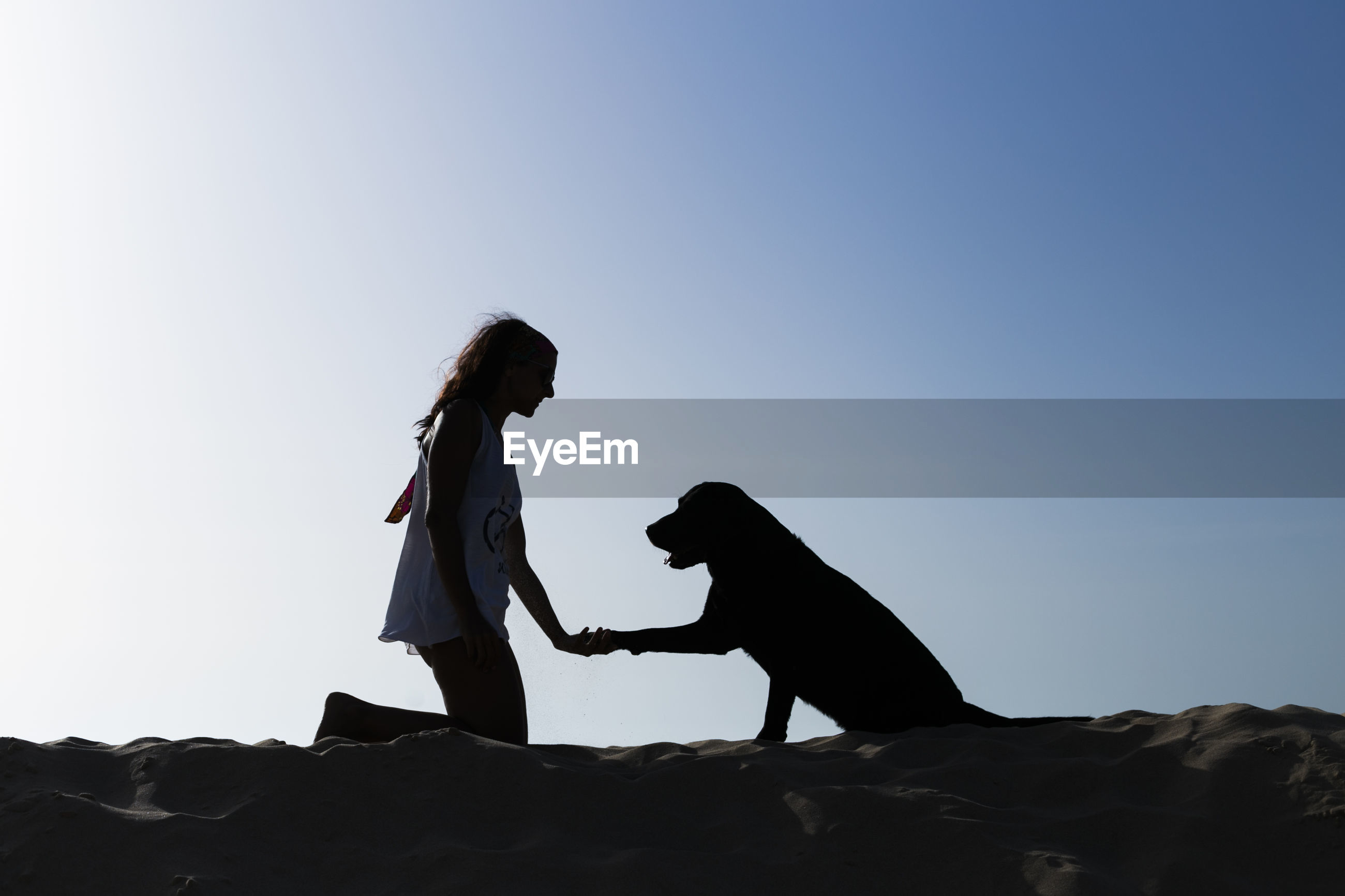 Woman playing with dog against clear sky