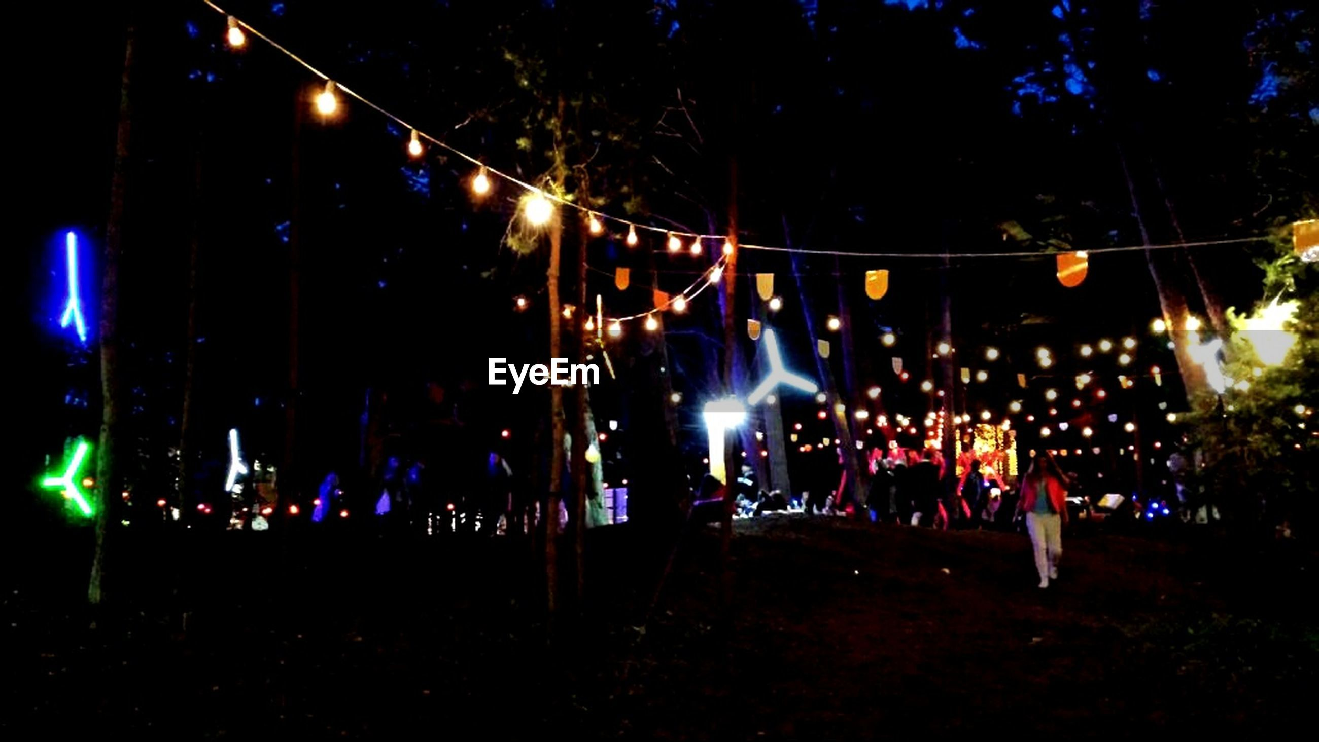 illuminated, night, lighting equipment, large group of people, lifestyles, men, leisure activity, person, celebration, light - natural phenomenon, arts culture and entertainment, enjoyment, tree, standing, crowd, outdoors, street light, decoration, dark