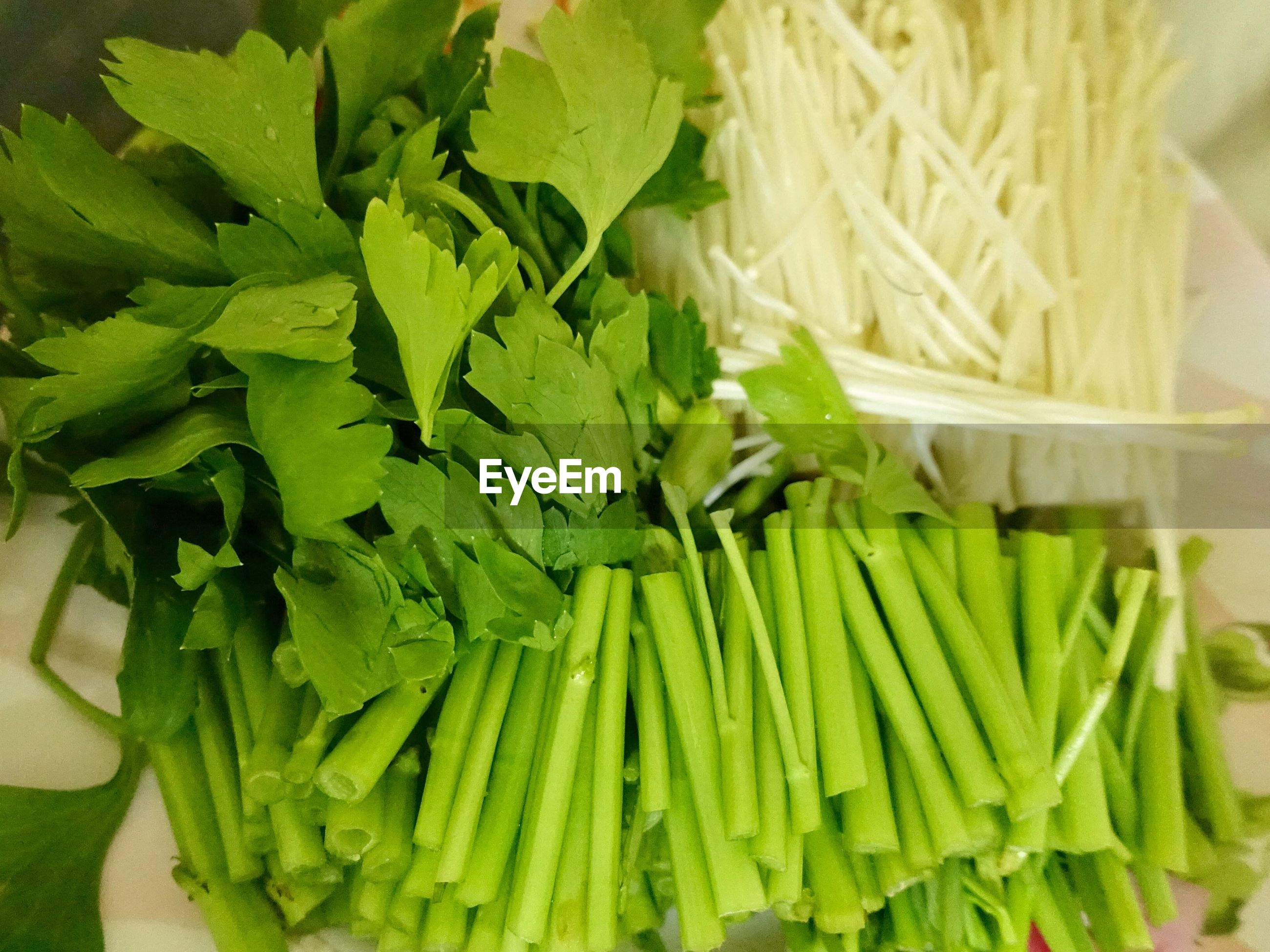 HIGH ANGLE VIEW OF VEGETABLES IN GREEN CONTAINER