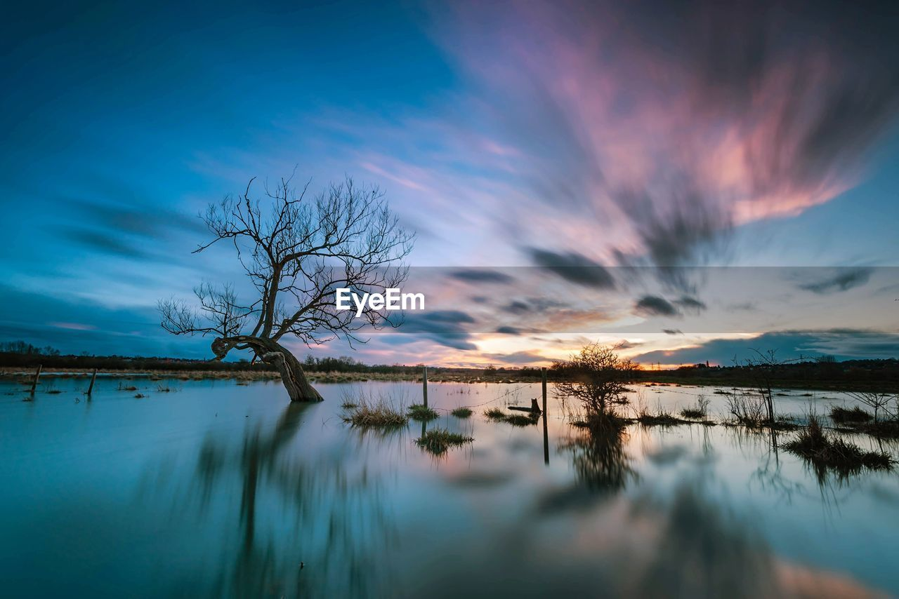 sky, water, beauty in nature, cloud - sky, tranquility, scenics - nature, tree, tranquil scene, reflection, lake, sunset, plant, nature, no people, non-urban scene, waterfront, bare tree, idyllic, outdoors