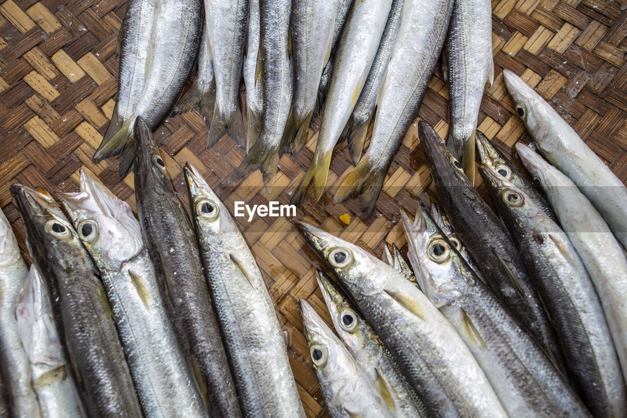 fish, vertebrate, seafood, food and drink, food, animal, freshness, wellbeing, healthy eating, raw food, no people, abundance, large group of objects, high angle view, day, basket, retail, container, for sale, outdoors, silver colored, fishing industry
