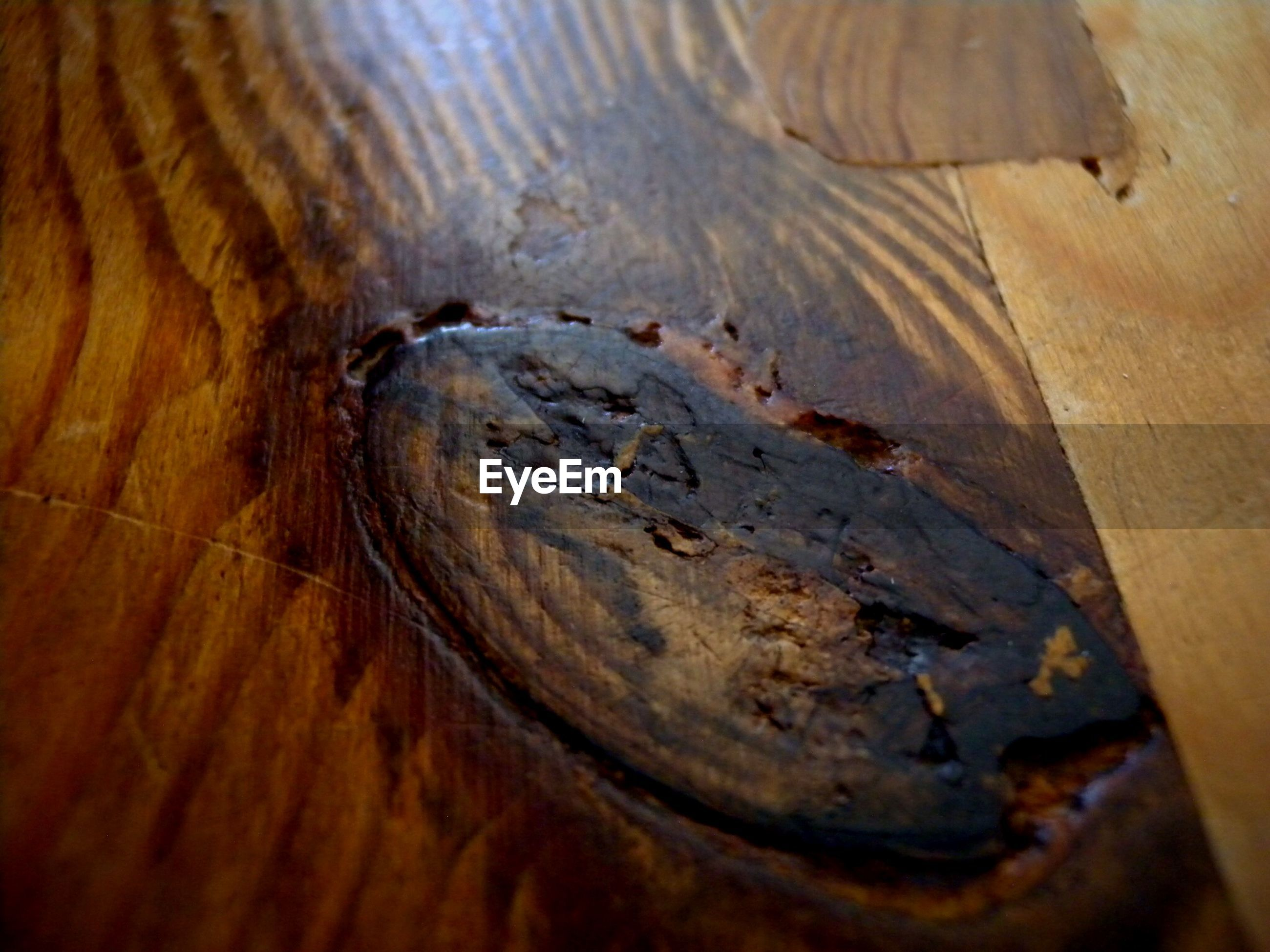 wood - material, water, close-up, wooden, high angle view, textured, wood, weathered, plank, old, no people, rusty, day, selective focus, outdoors, deterioration, sunlight, damaged, rough