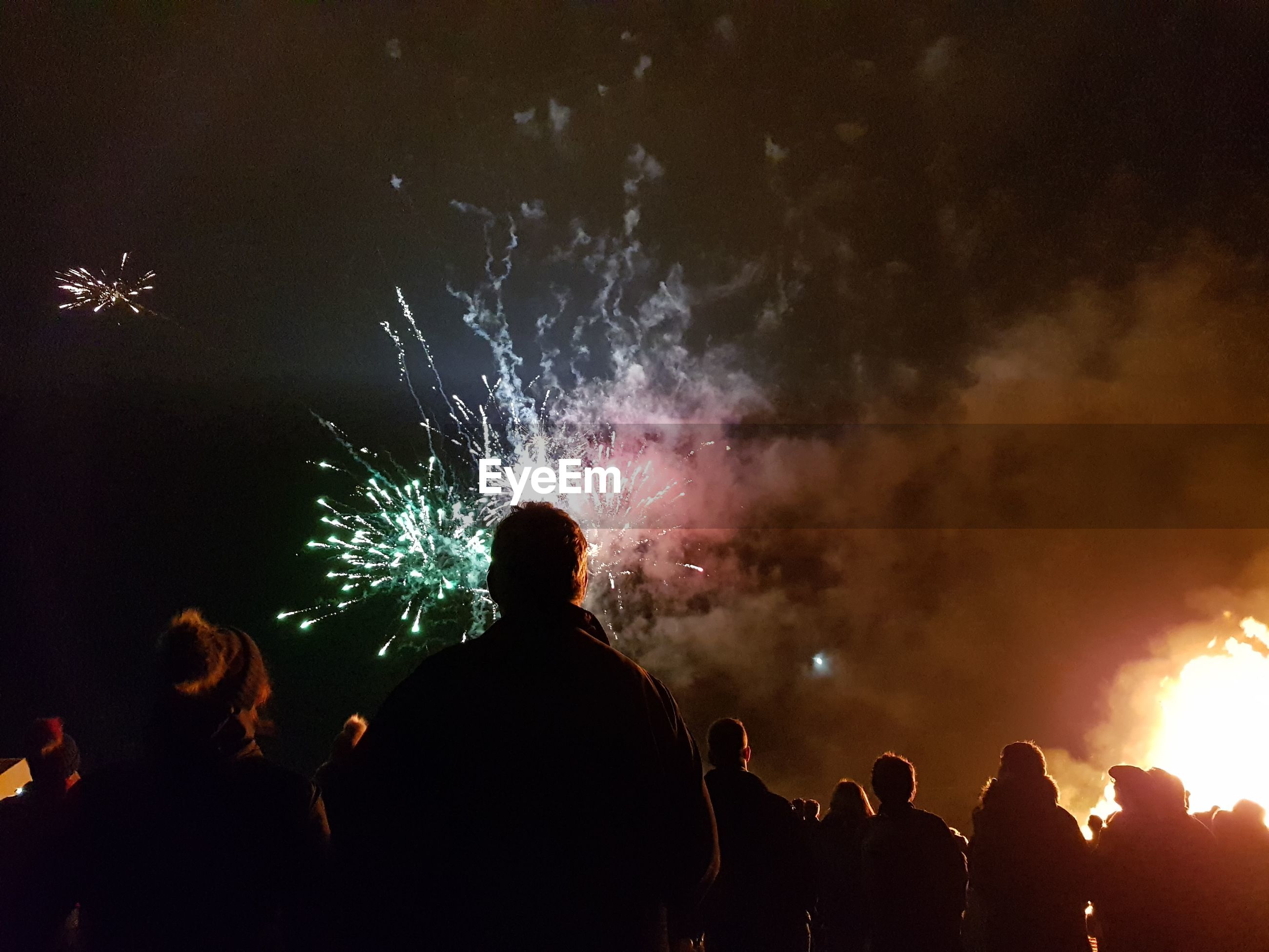 Rear view of silhouette people watching firework display at night