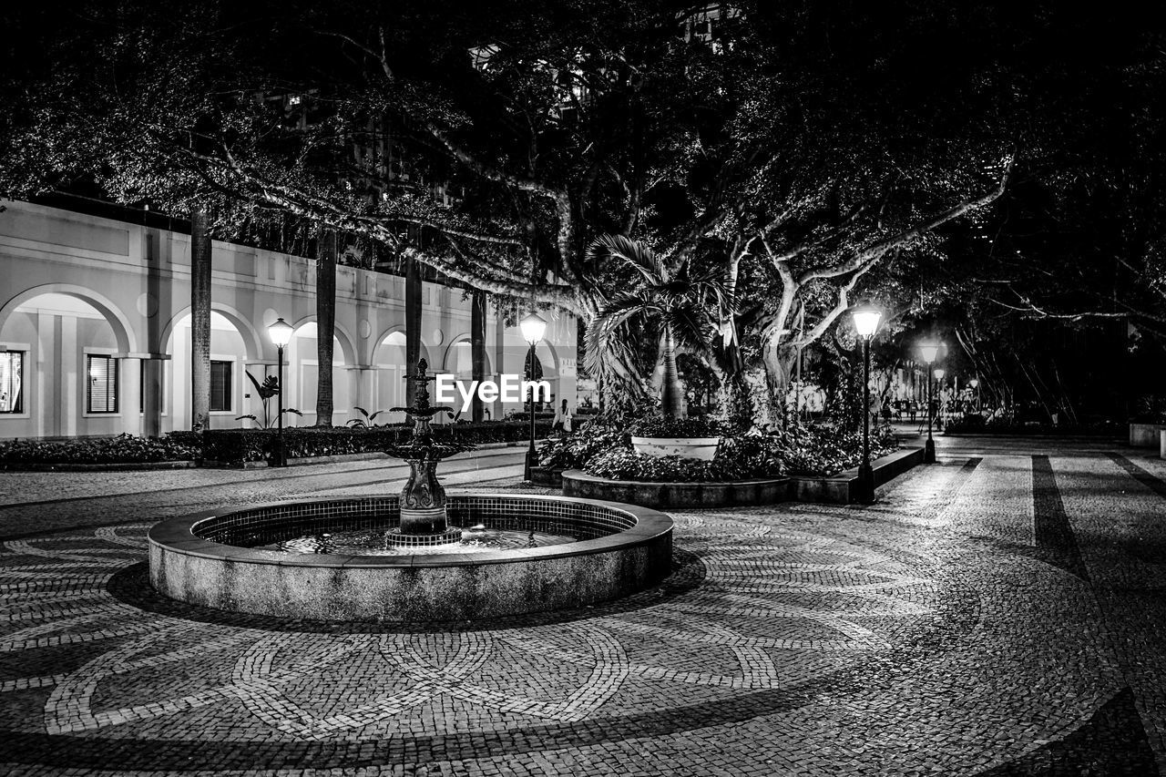 tree, plant, architecture, built structure, illuminated, night, fountain, nature, building exterior, no people, park, park - man made space, water, lighting equipment, outdoors, formal garden, building, garden, religion