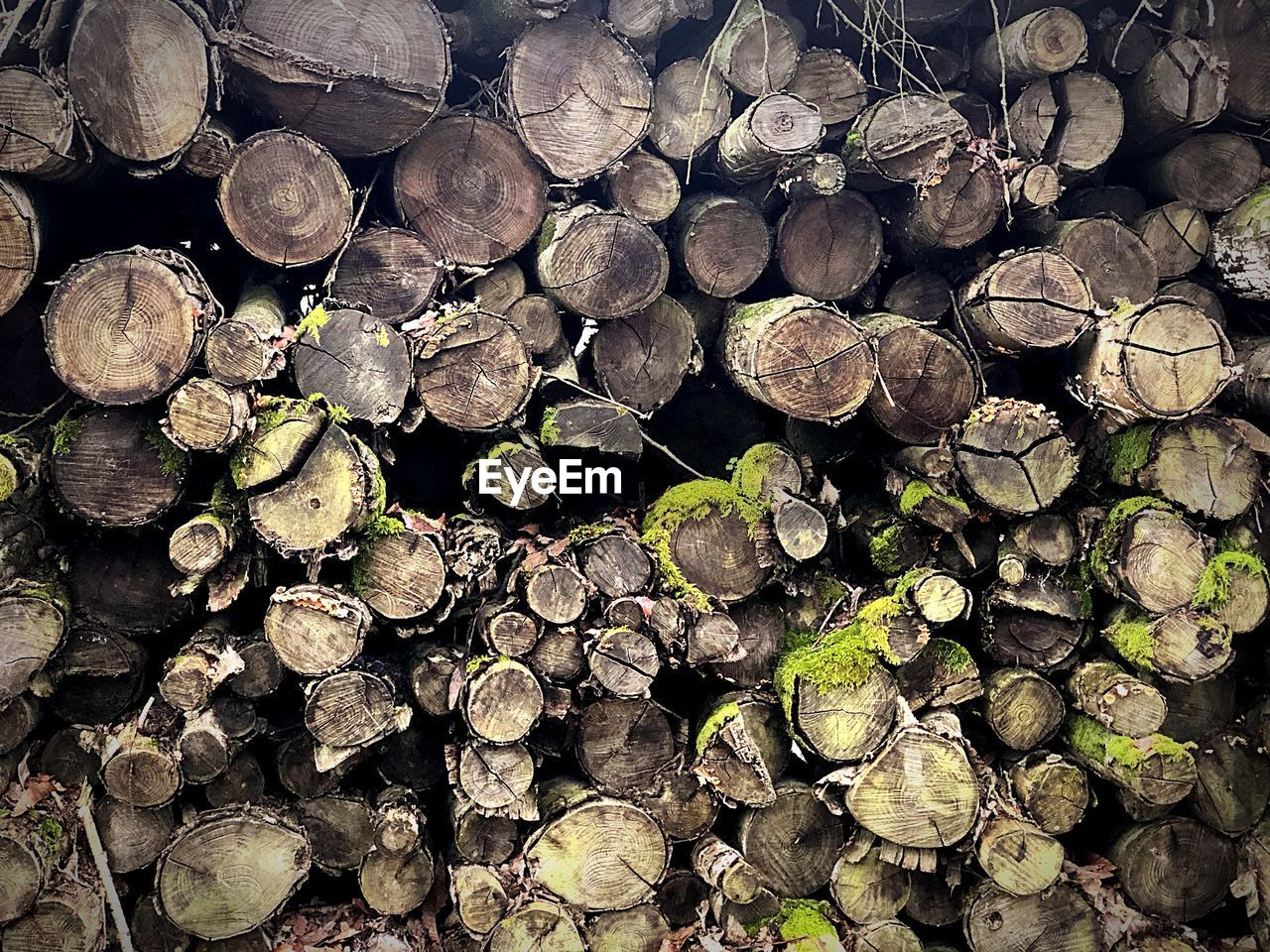 timber, stack, wood, firewood, log, full frame, forest, deforestation, tree, lumber industry, backgrounds, wood - material, large group of objects, abundance, fuel and power generation, fossil fuel, nature, heap, no people, environmental issues, woodpile, outdoors, chopped, tree ring
