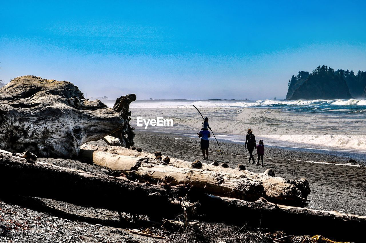 water, sky, sea, real people, land, nature, men, group of people, mammal, beach, beauty in nature, people, rock, day, lifestyles, solid, domestic, horizon over water, outdoors
