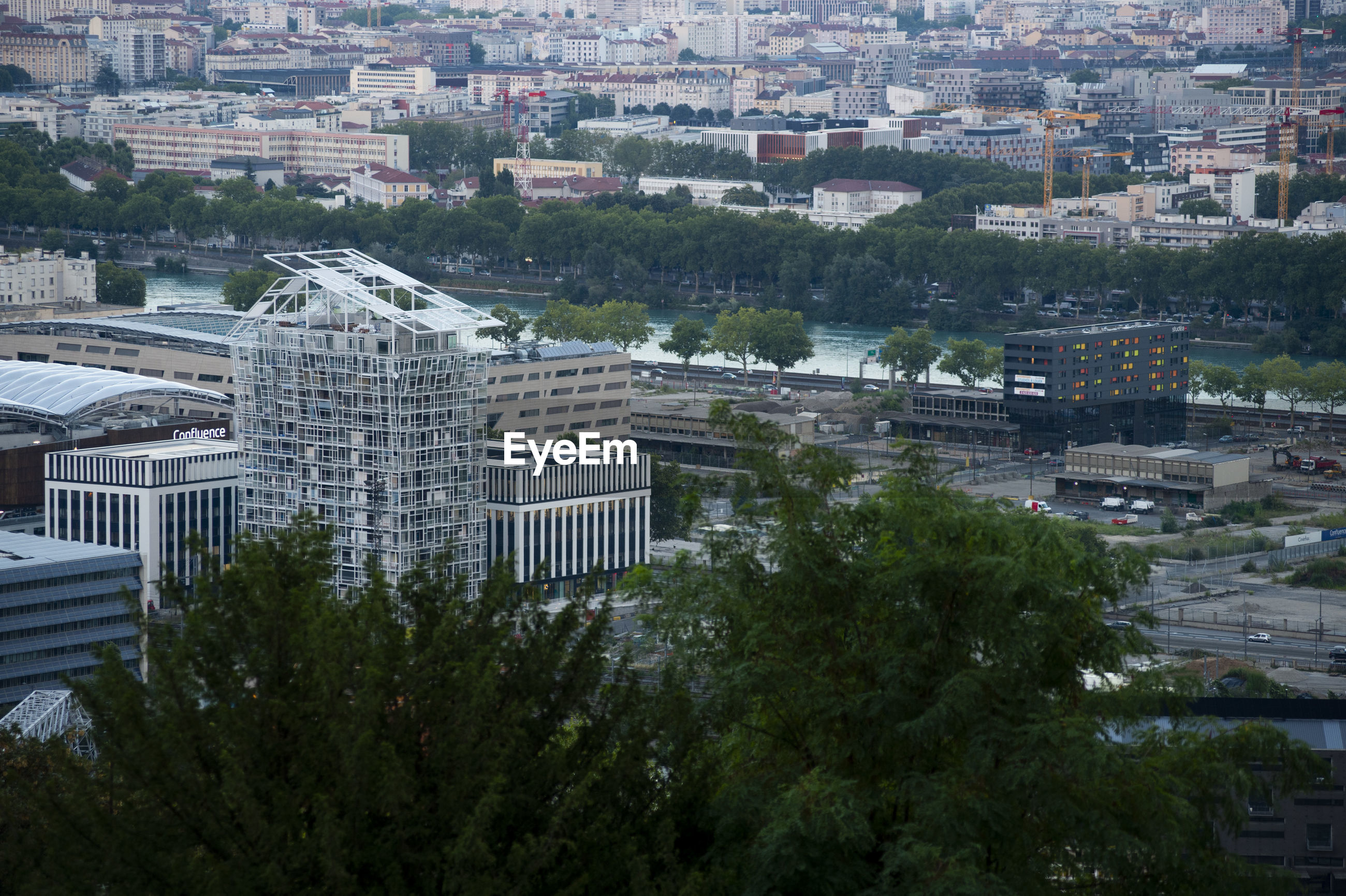 HIGH ANGLE VIEW OF BUILDINGS AND TREES IN CITY