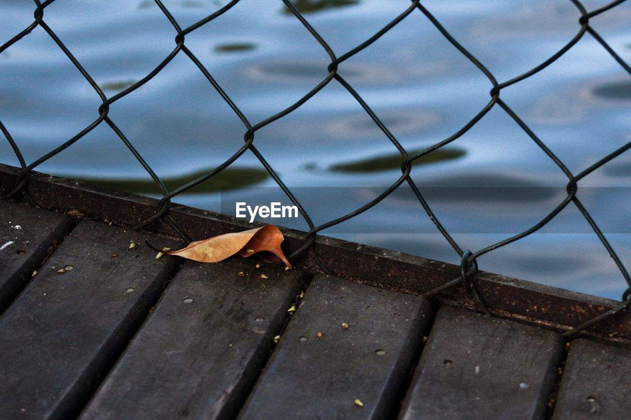 fence, boundary, barrier, metal, nature, no people, day, plant part, leaf, wood - material, safety, close-up, security, protection, chainlink fence, outdoors, autumn, focus on foreground, high angle view, sky, leaves, change