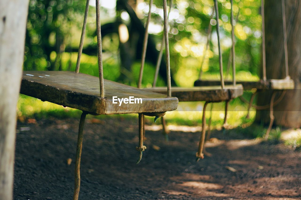 plant, focus on foreground, nature, tree, land, day, no people, wood - material, growth, forest, selective focus, outdoors, close-up, sunlight, swing, playground, wood, absence, field, rope