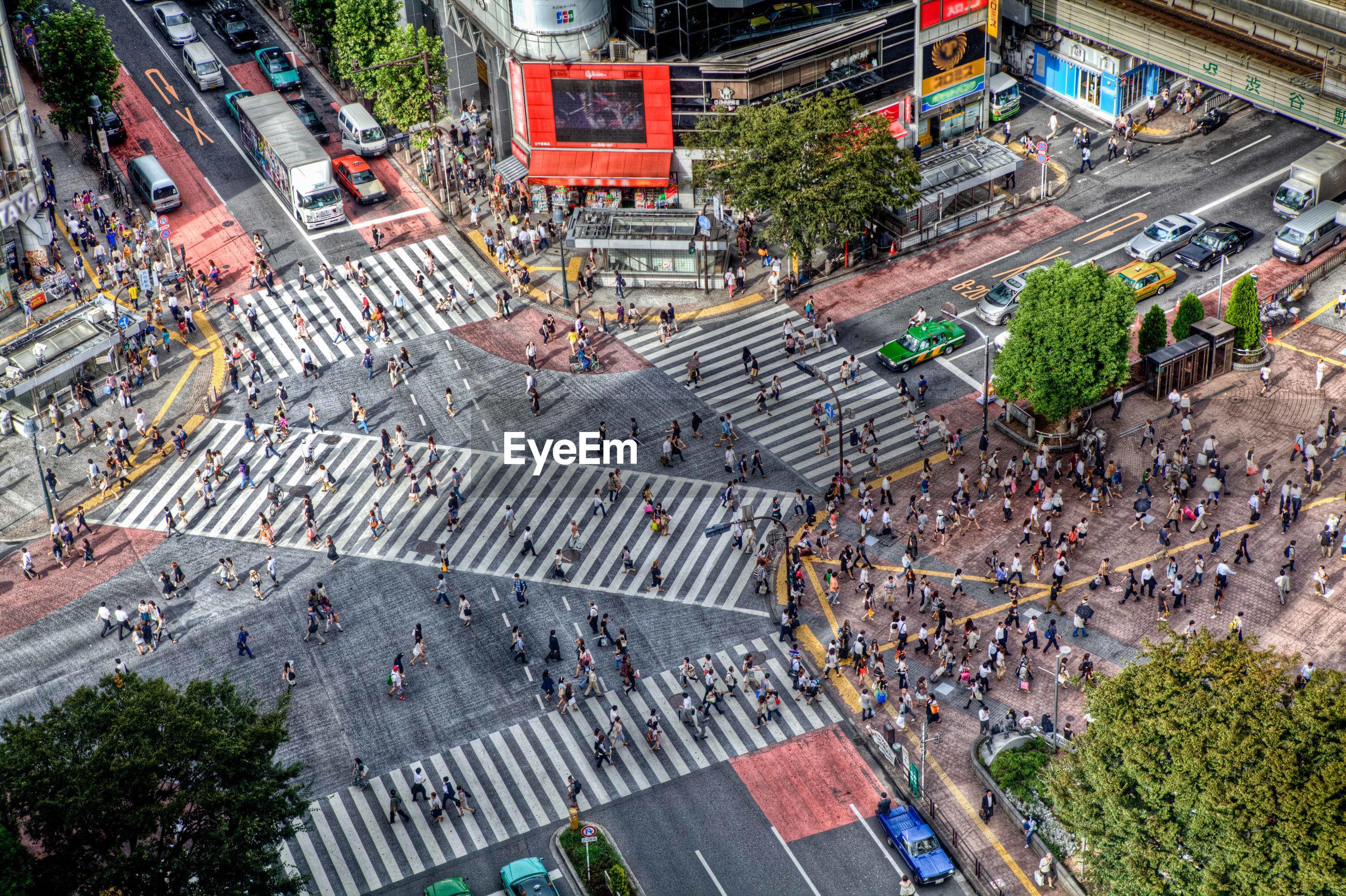 Aerial view of pedestrians crossing road