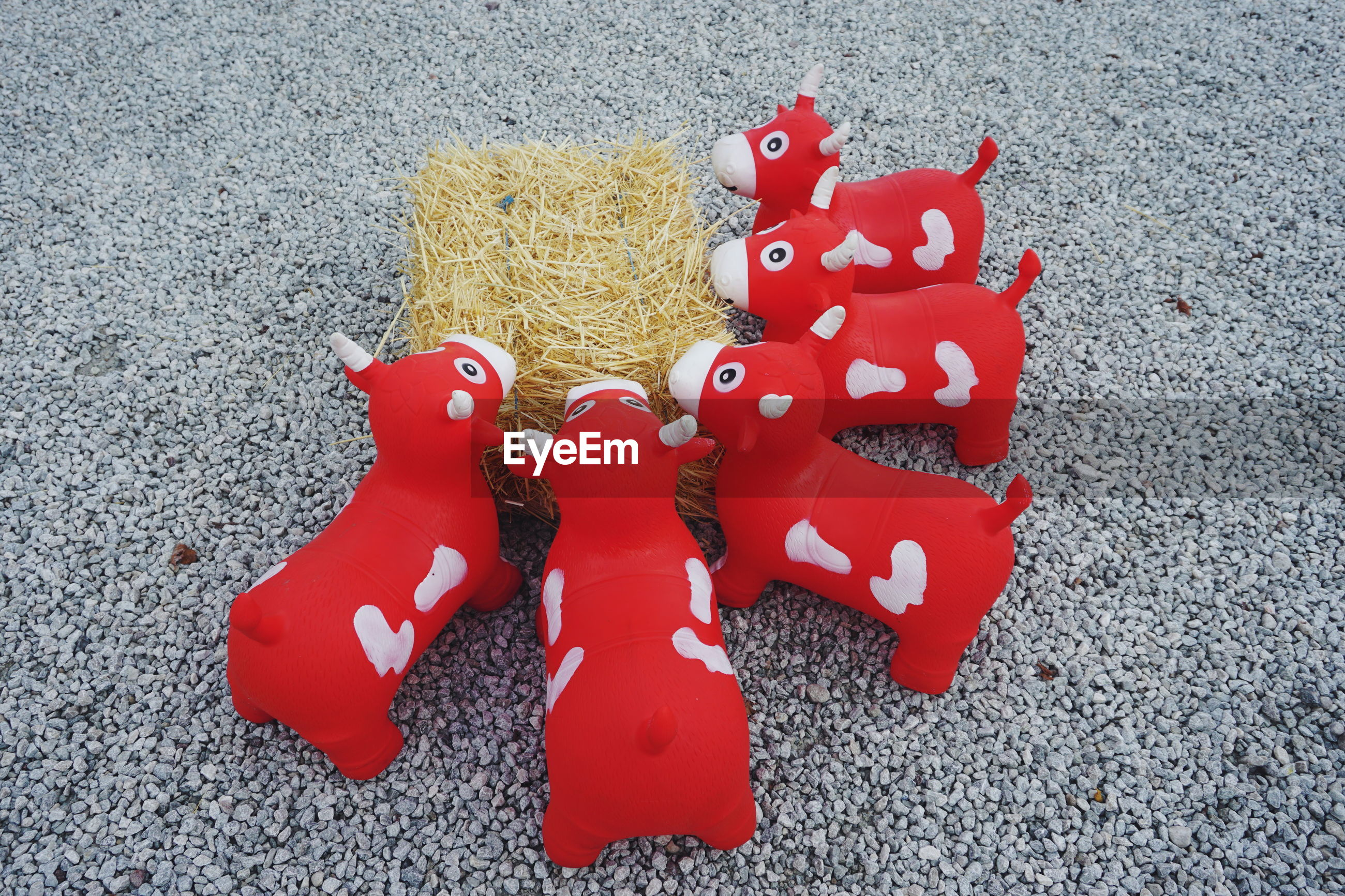 High angle view of red cow toys with hay on floor
