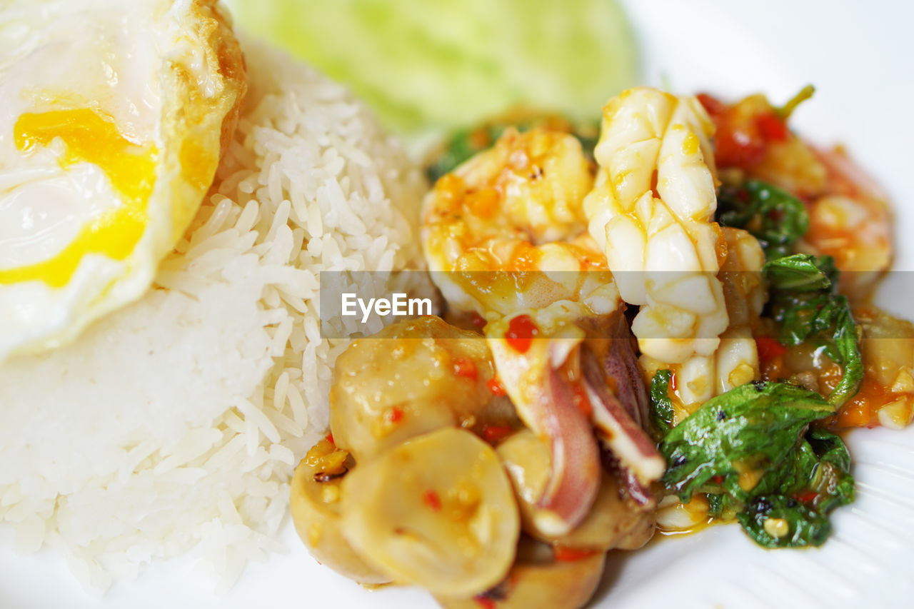food, food and drink, ready-to-eat, plate, freshness, meat, close-up, indoors, healthy eating, serving size, rice - food staple, wellbeing, still life, vegetable, meal, selective focus, no people, rice, egg, high angle view, temptation, crockery