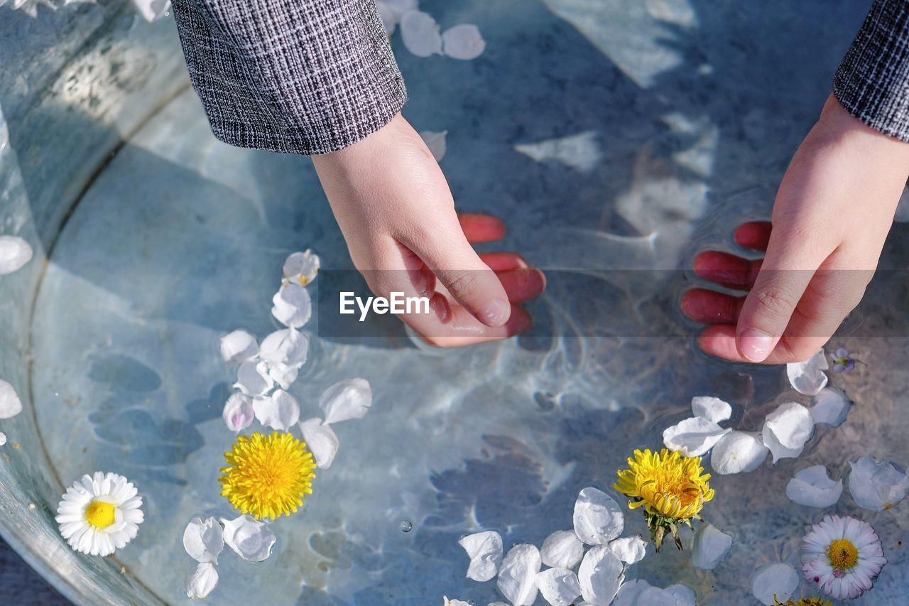Tenderness of daisies