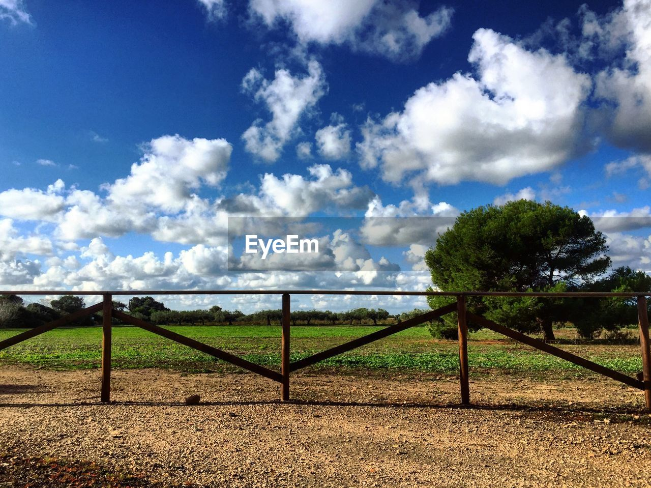 cloud - sky, sky, plant, tranquil scene, field, landscape, nature, boundary, barrier, tree, fence, land, tranquility, scenics - nature, beauty in nature, environment, day, no people, agriculture, grass, outdoors